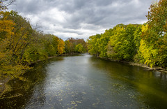 fall 2018-14 (kelsey.hurm) Tags: indiana fall whiteriver nature