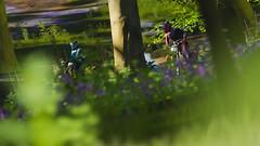 Unusual Route (Mr. Pebb) Tags: daytime day event offroad offroading woodland trees tree scenery nature dirt unitedkingdom uk britain greatbritain racinggame racegame 4k 4kgaming 3840x2160 169 landscapeformat landscapemode xboxone xboxonex xbox ms microsoft turn10studios t10 turn10 videogame videogamecapture screencapture screenshot imagecapture photomode stock stockshot motorcross dirtbike motorcycle motorbike forza forzaseries forzahorizon4 fh4 forzahorizon playgroundgames pg microsoftstudios microsoftgamestudios firstpartygame firstpartytitle 1stpartygame 1stpartytitle colourshot colorshot colourimage colorimage colorpicture colourpicture showcaseevent