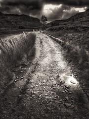 Yet again......... (Jill Lewins) Tags: cwmorthin slate quarry path stony slatewalls