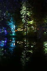 2018 - 4.10.18 Enchanted Forest (93) (marie137) Tags: forest lights trees show marie137 bright colourful pitlochry treeman attraction visit entertainment music outdoors sculptures wicker food drink family people water animation