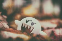 Paranormal Presence (flashfix) Tags: october162018 2018inphotos flashfix flashfixphotography ottawa ontario canada nikond7100 40mm character bokeh leaves autumn boo mario supermario figurine toy 2spooky4u