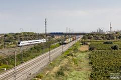 Alvia Renfe Mercancias (Escursso) Tags: alvia bellvei caf mediadistancia renfe tarragona railway s120 train tren