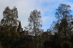 IMG_5615.jpg (keithr™) Tags: abbey glen autumn leaves dunfermline scotland unitedkingdom gb