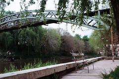 (intivisible) Tags: film 35mm analog analogic analógica prakticamtl3 portra400 banco bench bytheriver river río nature naturaleza trees árboles abandoned abandonado