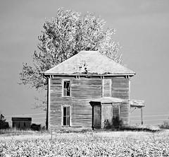 Preempted in Preemption (David Sebben) Tags: abandoned farmhouse infrared black white preemption illinois house