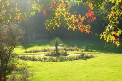 Insole Court Garden Light (Dave Roberts3) Tags: llandaff cardiff glamorgan wales insolecourt autumn fall