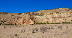 June 17, 2018-DSC_0843_J (Bert_T_TX) Tags: landscape desert utah arizona rock red moab bryce grand canyon arches sedona rocks sky blue flower sand rocky travel adventure colorado river road highway view viewpoint kodachrome colorful history old bees plants flowers arch window windows orange green