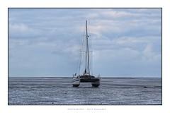 Ebbe (ruthehrhardt) Tags: tide boat northsea nikond5300 katamaran ebbe
