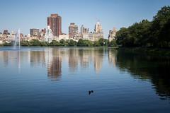 Central Park (maxence.lefort) Tags: newyork unitedstates us