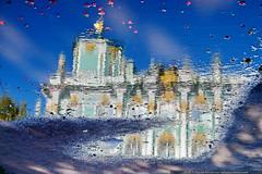 DSC_3691 (yuhansson) Tags: петербург санктпетербург питер дождь осень зазеркалье отражения отражение красота путешествие югансон юрийюгансон petersburg stpetersburg rain wonderland reflect reflection beauty travel