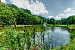 A Summer Pond (enneafive) Tags: nieuwenhoven belgium limburg sittruiden water sky clouds reflections nature pond fujifilm xt2 affinityphoto hdr