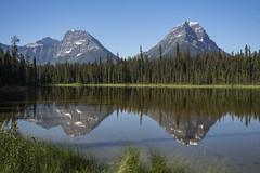 Pond near Athabaska Falls (birgitmischewski) Tags: athabaskafalls pond icefieldparkway