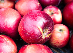 Apples 4 (S's images) Tags: west dean garden autumn harvest apples kitchen fruit orchard red