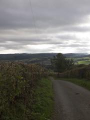 (Turbogirlie) Tags: norton presteigne powys radnorshire fungi spaceguardcentre llanshayhill stonewallhill shropshire knighton autumnwalks autumncolours autumn2018 autumn hills hillsofwales marches