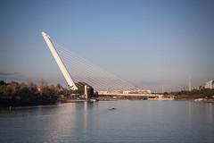 siviglia (laura sinapi) Tags: siviglia sevilla fiume river ponte bridge