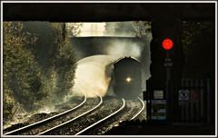 Out of the shadows (david.hayes77) Tags: halo flint flintshire wales cymru northwales 2018 autumn nr networkrail class97 97303 97304 contrejour backlit backlight rhtt railheadtreatmenttrain type3 clwyd englishelectric spray redlight exhaust clag glint