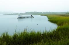 Soft Light (robin-loo) Tags: chatham stageharbour ma capecod fog boat nikon nikond5100