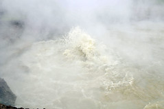 _TMY6810 (Бесплатный фотобанк) Tags: сша монтана парк йеллоустон грязевой вулкан usa yellowstone
