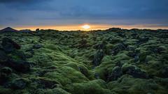 Wavy land (ilaria_gori) Tags: iceland volcanic sunset