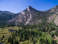 Poudre Canyon from Above (Kevin VanEmburgh Photography) Tags: ftcollins colorado explore kevinvanemburghphotography mountains nature outdoors outside travel wild poudrecanyon drone dji mountainrange green trees arial bluesky fromthesky landscape