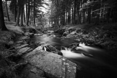 Deep In The Forest (Long Exposure,Monochrome,Landscape/Nature Photogra) Tags: fineart longexposure monochrome blackandwhite daylightlongexposure ndfilters water river forest deepintheforest nature landscape photography image canvasandprintsforsale