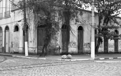 Abandoned house (Manuel Goncalves) Tags: addox100 35mmfilm blackandwhite house trees road street santos brazil pentaxme 50mmlens epsonv500scanner
