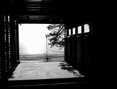 Looking (docwiththecamera) Tags: sea ocean view cycle beach bw window shadow sun autumn fall tree