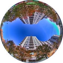 crown heights (amazingstoker) Tags: fish eye fisheye crown heights basingstoke amazingstoke basingrad link sky trees looking up round circle plaza 180 degree view autumn colour hampshire alencon