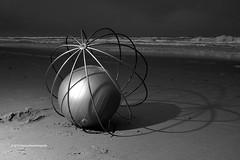 bollen strand Scheveningen01 zw ©