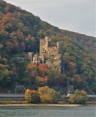 autumn colours on the Rhine vineyards (Christopher DunstanBurgh) Tags: rhein rhin rhine rijn herbst autumn automne rüdesheim assmannshausen niederwalddenkmal europa europe schlossrheinstein