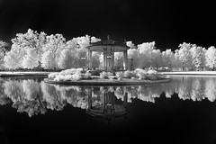 Morning in the Park (Jon Dickson Photography) Tags: stl pagoda park forest infrared blackwhite