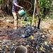 GML Project in Sub-Saharan Africa