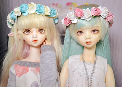 momoflowne (rappsface) Tags: bjd ball jointed doll balljointeddoll abjd dollmore dollinmind dimdoll dimflowne flowne momo dollmoremomo