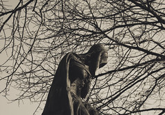 (nehuencot) Tags: cemetery mausoleum argentina buenosaires nikon dark statue death sadness hooded fallenleaves branches