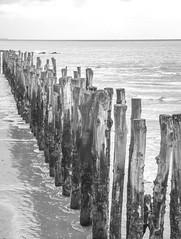 Saint-Malo (Geert Van Keymolen) Tags: bw baie bretagne brittany d5200 france francia frankreich frankrijk nikon nikond5200 santmaloù baai baye beach blackwhite landscape landschaft landschap meer mer monochrome monochroom natur nature natuur paysage saintmalo sea strand zee zwartwit fr