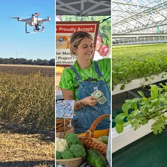 A photo collage of an UAV, a farmer's market and hydroponic system (USDAgov) Tags: officeofthechiefeconomist biotechnology farming foodandnutrition technology economicresearchservice
