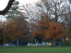 Grove Park, Harborne - playground (ell brown) Tags: harborne birmingham westmidlands england unitedkingdom greatbritain grovepark harborneparkrd tree trees millfarmrd grovelane groveln aldermanwbyngkenrick groveparkbirmingham birminghamcitycouncil thegrove williamkenrick autumn leaves playground