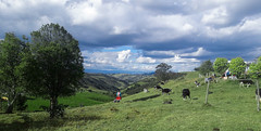 Andean farm life