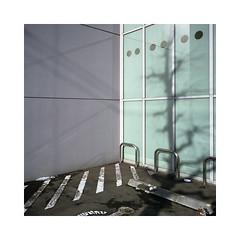 (roberto_saba) Tags: mediumformat 6x6 120 mamiya mamiya6 50mm f4 ブローニー fujicolor fujifilm fuji hokkaido sapporo japan
