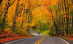Driving in a dream (Wind Walk) Tags: michigan fall color autumn dream car drive road curve copper harbor tree tunnel gftftftftffrttgftgfrf