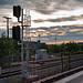 CSX Signal Next to Twinbrook Station