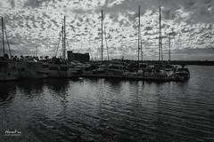 Storm on the Way (NormFox) Tags: bw bnw blackandwhite blackandwhiteartistry boats california clouds harbor monochrome mood ocean sail sandiego sea sky water seascape unitedstates us