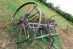 Full Circle (gabi-h) Tags: hayrake fence cedarrailfence gabih antique vintage rust princeedwardcounty circle wheel fencefriday oldfarmmachinery yesteryear
