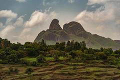 Tigray, Ethiopia (Rod Waddington) Tags: africa african afrique afrika äthiopien ethiopia ethiopian etiopia ethiopie etiopian tigray rural landscape trees farming farm fields mist clouds mountains mountain nature culture cultural