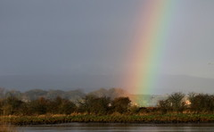 Rainbow over the River Forth this morning (themadbirdlady) Tags: southalloans8790 riverforth rainbow