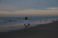 JLF16341 (jlfaurie) Tags: deauville normandie normandy france francia dqaniel mariefrance louisette mechas mpmdf jlfr jlfaurie pentax k5ii plage playa beach seaside mer mar sea