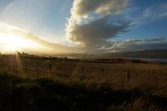 Cromatry Firth, Highlands, Scotland (lozinka_gergova) Tags: scotland scenery outdoor landscape landscapephotography naturephotography nature sky sun photography amateurophotography sonynexvg20 leica leicalens highlands rossshire cromatryfirth