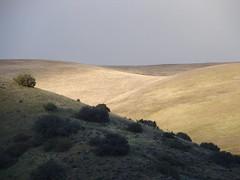 Last Rays Of Light On A Gray Day (nedlugr) Tags: california ca usa gorman hills light shadows fences trails fence
