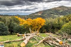Tardets (64) (https://pays-basque-et-bearn.pagexl.com/) Tags: 64 aquitaine barcus colinebuch france lasoule pyrénées tardets montagne paysage pointdevue pyrénéesatlantiques