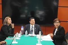 AMC4201 (Diputados LXIV Legislatura) Tags: